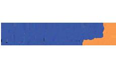 denselight logo